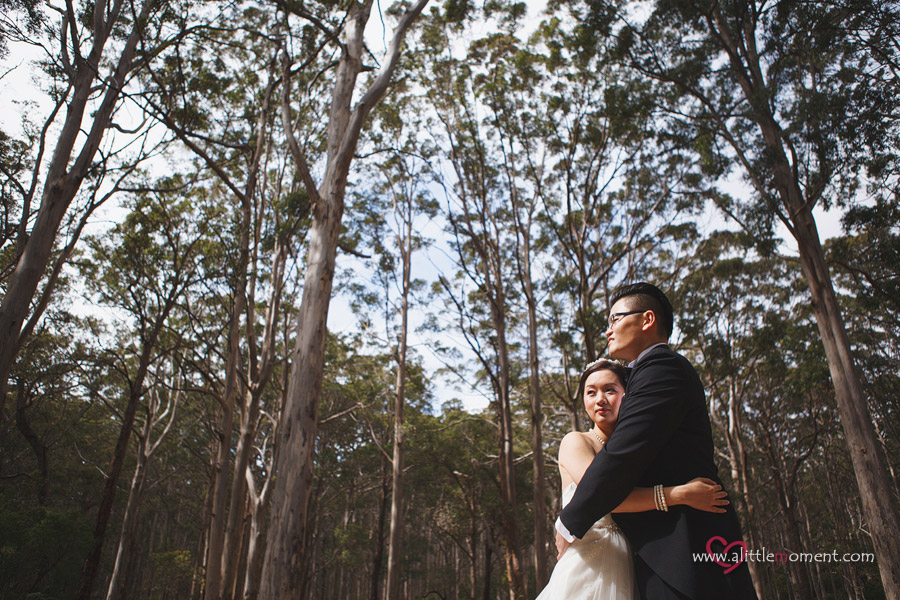 Agnes and Bobby's Perth Pre-Wedding by Sze Lee from A Little Moment Photography Singapore