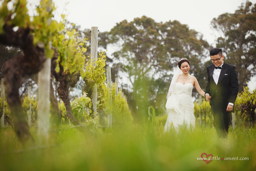 Agnes and Bobby's Perth Pre-Wedding at vineyard by Sze Lee from A Little Moment Photography Singapore
