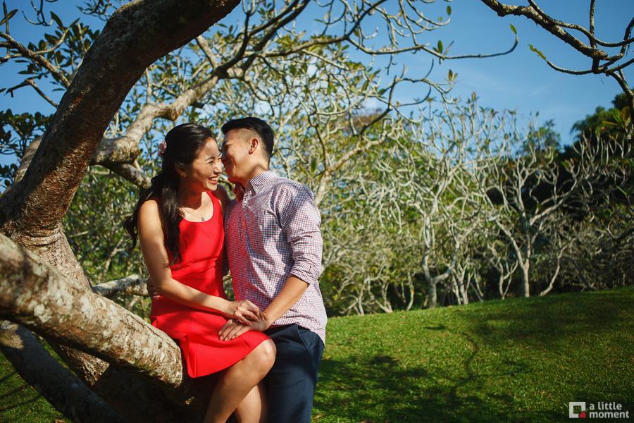 Singapore Botanic Gardens Casual Pre-Wedding